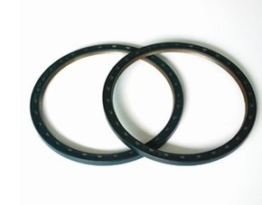 Rotary shaft seals with ptfe lip