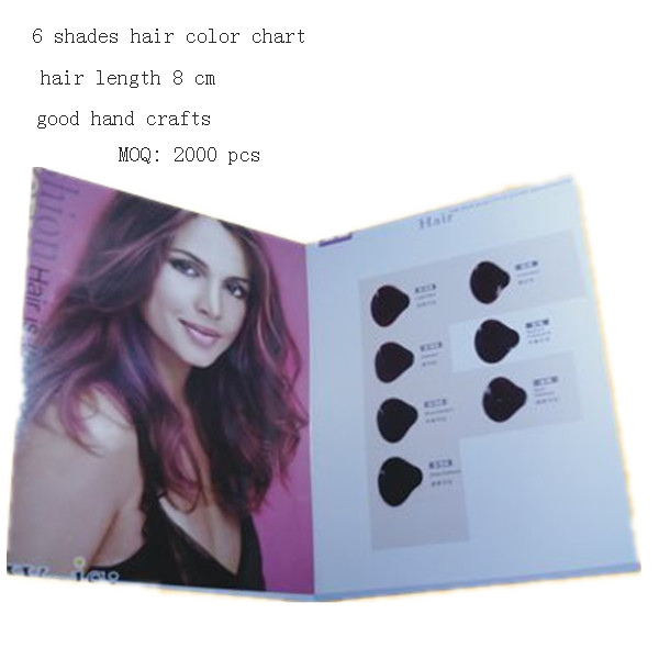 6 swatches hair color catalogue