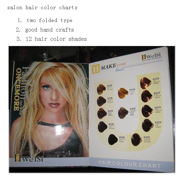 12 shades hair color book