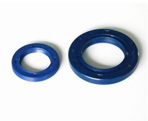Double lip silicone oil seal