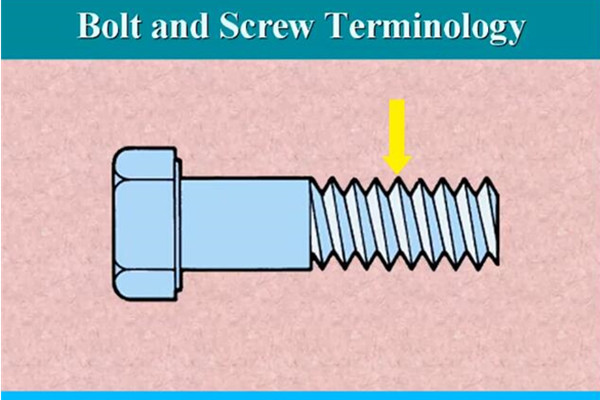 Bolt and Screw Terminology